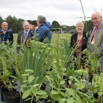 Norwich Mind's plant stall - http://www.mind.org.uk/help/mind_in_your_area/183