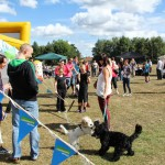 Heartsease_Funday_070913_IMG_7390
